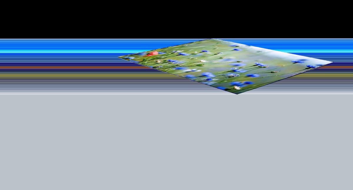 3D полы. Вид 2